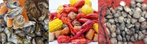 the-2018-north-carolina-aquaculture-development-conference-announces-the-cultured-seafood-festival-this-march-in-new-bern