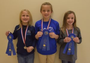 Cover photo for Future Stars Shine in State Cloverbud Hippology
