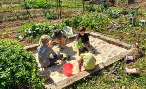 Children in a sandbox in a community garden
