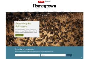 Homegrown website screenshot showing honey bees on a honeycomb