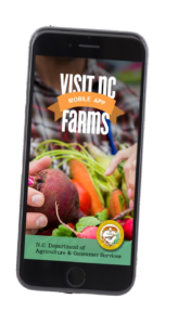 image of the visit nc farms logo with a smart photo of vegetables behind the ncda&cs logo and name