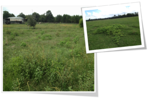 Cover photo for Pasture Management Session at NC Annual Ext. Conference