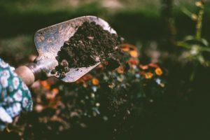 Image of soil