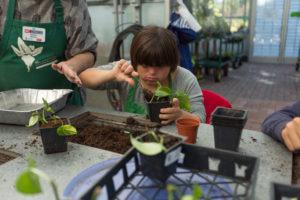 Cover photo for Annual Extension Master Gardener Volunteer Speaking Event 2019