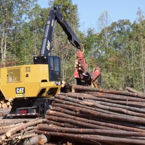Cover photo for Timber Industry in North Carolina Contributed Over $915 Million in 2017