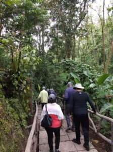 Cover photo for EMG Volunteers Explore Costa Rica and New Zealand!