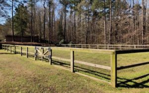 Cover photo for 140 Acres for Lease in Clayton With 90 Ac in Pasture