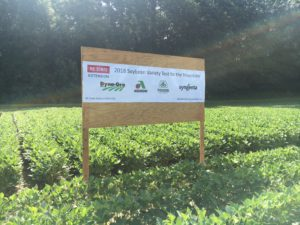 Cover photo for Soybean Variety Performance in the NC Mountains