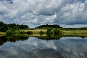 Picture of irrigation pond in apple orchard