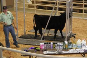 Cover photo for Gary Stamey Livestock Clinic