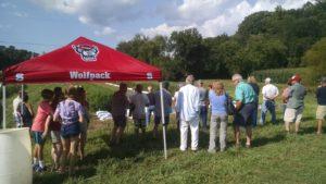 People looking at hemp research plots