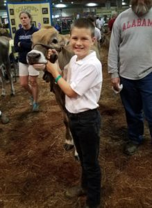 Cover photo for Youth Livestock Showing Tips