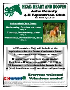 Cover photo for 4-H Equestrian Club