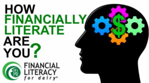 Cover photo for New Financial Literacy Training Series, Fall-Winter 2019-2020