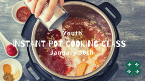 instant pot cooking picture
