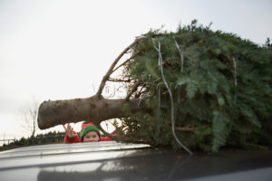 photo of boy reaching for Christmas tree on car roof