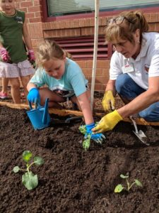 Master Gardener Pat Newcomer plants a raised bed garden with a student.