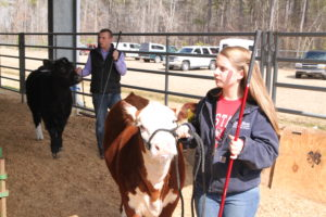Cover photo for NC Livestock School & East Coast Extravaganza