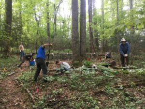 Cover photo for Meet the WNC Woodland Stewards