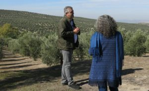 Cover photo for Sharing Agritourism Practices; a Sabbatical in Spain