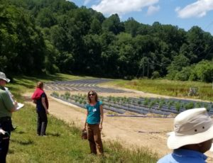 several people standing near a research hemp field
