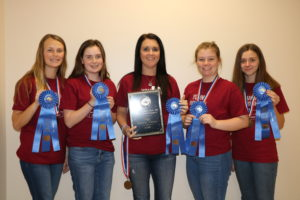 Cover photo for 2020 N.C. 4-H Horsebowl Champions Crowned