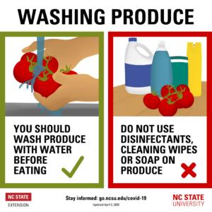 Washing Produce