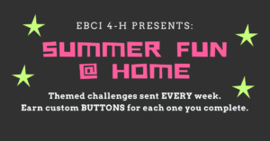 Cover photo for 2020 4-H Summer Fun at Home