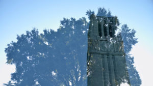 Double exposure of the NC State University Belltower and trees.