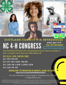 Cover photo for NC 4-H Congress 2020 Registration