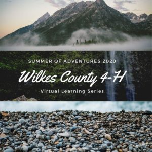 Wilkes County 4-H