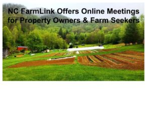 Cover photo for Let's Talk - NC FarmLink Goes Virtual