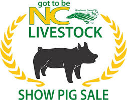 got to be NC show pig sale