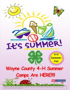 Cover photo for It's Summer! Wayne County 4-H Online Summer Camps Are HERE!!!