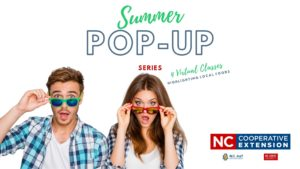 Cover photo for Extension Summer Pop-Up Series