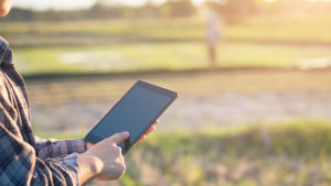A farmer using a tablet while standing in a farm field