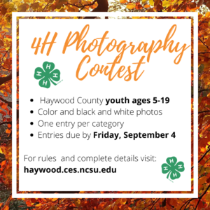 Cover photo for 4-H Photography Contest