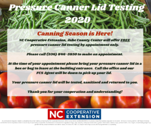 Cover photo for Pressure Canner Lid Testing