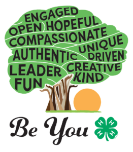 Cover photo for New State 4-H Council Theme