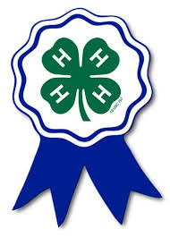 Cover photo for WINNERS Announced: 4-H Pumpkin-Palooza Photo Contest