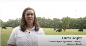 Cover photo for Video: Controlling Pasture Weeds