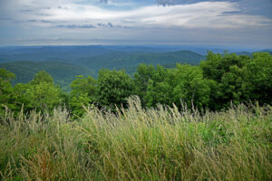 A view from the Blue Ridge Parkway in Western NC.