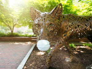NC State wolf statue wearing face mask COVID-19