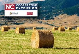 Cover photo for Above Average Hay Resources