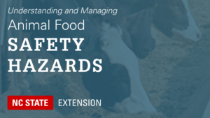teal overlay on cows eating with text Understanding and Managing Animal Food Safety Hazards
