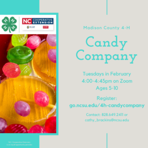 4-H Candy Company Flyer. All text in webpage.