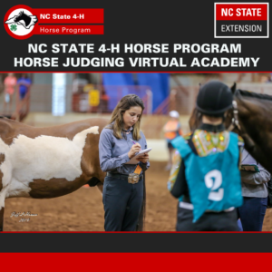 Cover photo for February 2021 NC 4-H Horse Program Newsletter
