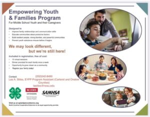 Empowering Youth and Families Program Flyer