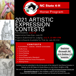 Cover photo for 2021 NC 4-H Horse Program Artistic Expression and Creative Writing Contests