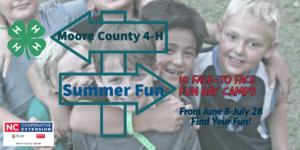 summer fun announcement